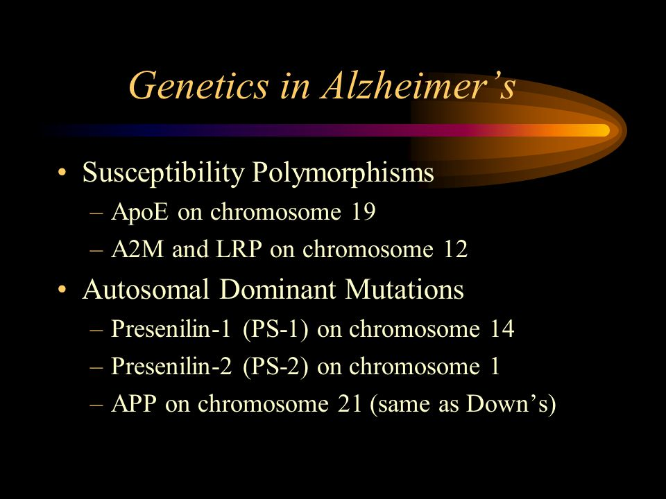 Genetics in Alzheimer's Susceptibility Polymorphisms –ApoE on chromosome 19 –A2M and LRP on chromosome 12 Autosomal Dominant Mutations –Presenilin-1 (PS-1) on chromosome 14 –Presenilin-2 (PS-2) on chromosome 1 –APP on chromosome 21 (same as Down's)