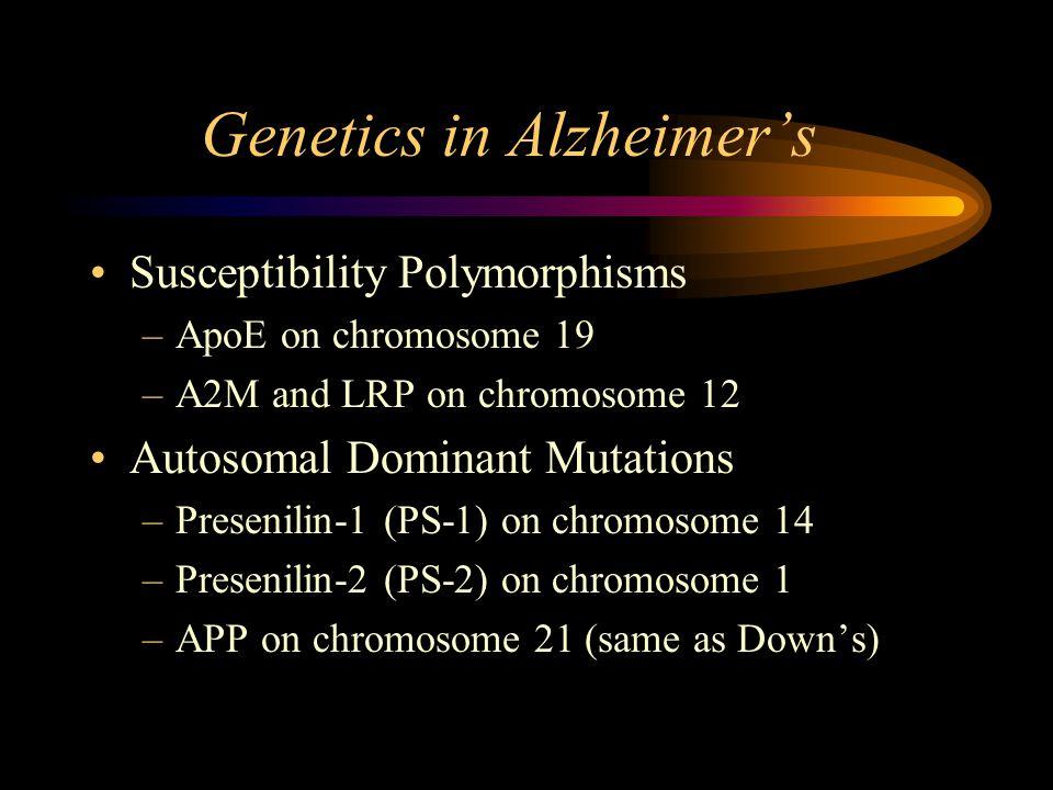 Genetics in Alzheimer's Susceptibility Polymorphisms –ApoE on chromosome 19 –A2M and LRP on chromosome 12 Autosomal Dominant Mutations –Presenilin-1 (