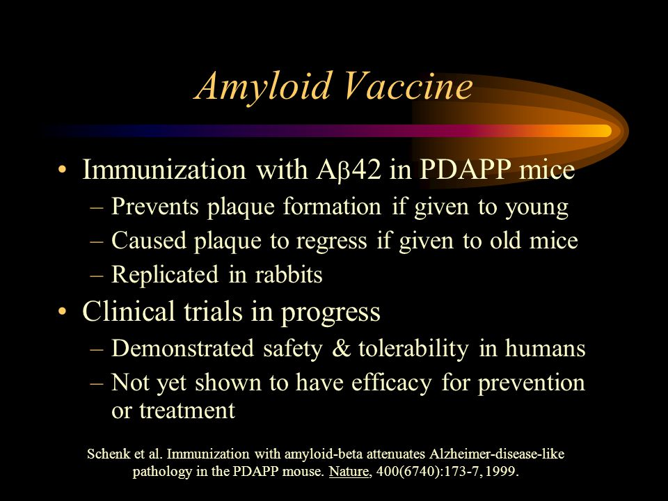 Amyloid Vaccine Immunization with A  42 in PDAPP mice –Prevents plaque formation if given to young –Caused plaque to regress if given to old mice –Replicated in rabbits Clinical trials in progress –Demonstrated safety & tolerability in humans –Not yet shown to have efficacy for prevention or treatment Schenk et al.