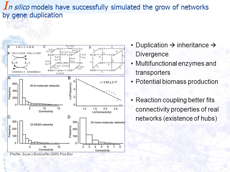 Pfeiffer, Soyer y Bonhoeffer (2005) Plos Biol Duplication  inheritance  Divergence Multifunctional enzymes and transporters Potential biomass production Reaction coupling better fits connectivity properties of real networks (existence of hubs) I n silico models have successfully simulated the grow of networks by gene duplication