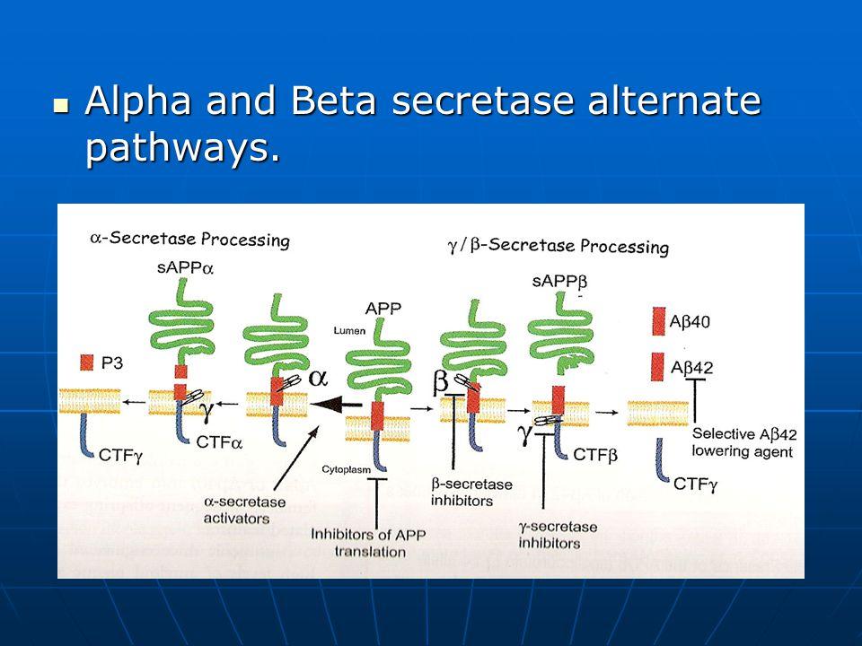 Alpha and Beta secretase alternate pathways. Alpha and Beta secretase alternate pathways.