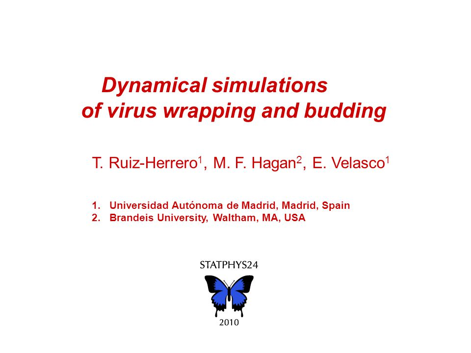 Dynamical simulations of virus wrapping and budding T.