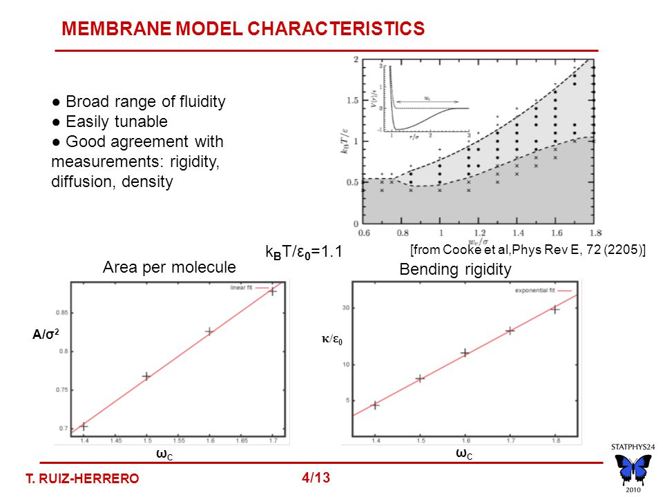 MEMBRANE MODEL CHARACTERISTICS ● Broad range of fluidity ● Easily tunable ● Good agreement with measurements: rigidity, diffusion, density ωCωC κ/ε0 κ/ε0 ωCωC A/σ 2 k B T/ε 0 =1.1 [from Cooke et al,Phys Rev E, 72 (2205)] Area per molecule Bending rigidity T.
