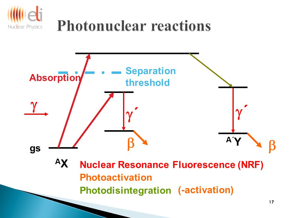 gs ´´  Separation threshold AXAX A´ Y  Nuclear Resonance Fluorescence (NRF) Photoactivation Photodisintegration  Absorption (-activation) ´´ 17