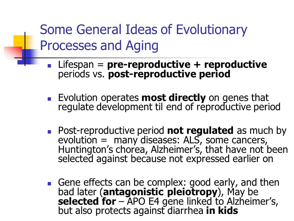 Some General Ideas of Evolutionary Processes and Aging Lifespan = pre-reproductive + reproductive periods vs.
