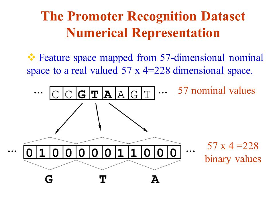 The Promoter Recognition Dataset Numerical Representation  Feature space mapped from 57-dimensional nominal space to a real valued 57 x 4=228 dimensional space.