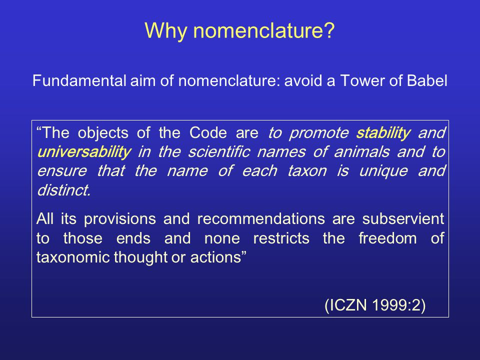 Synonyms and Homonyms Synonyms: 2 or more names = 1 taxon –Nomenclatural (= objective, homotypic) synonyms (e.g., replacement names: nomina nova, …)