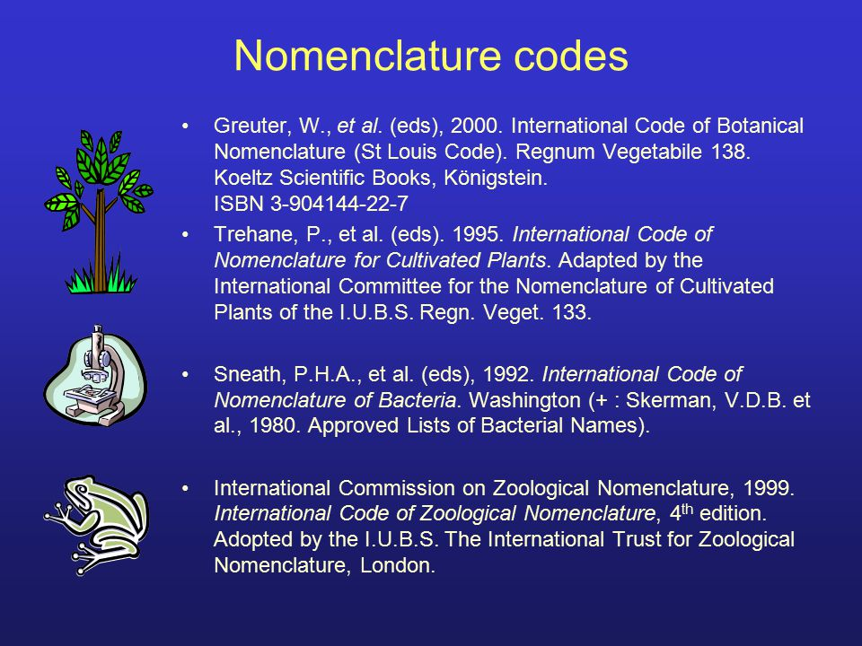 1)The codes have different starting dates and works 2)The codes are independent => inter-code homonyms are possible, allowed, and common The different codes: a comparison