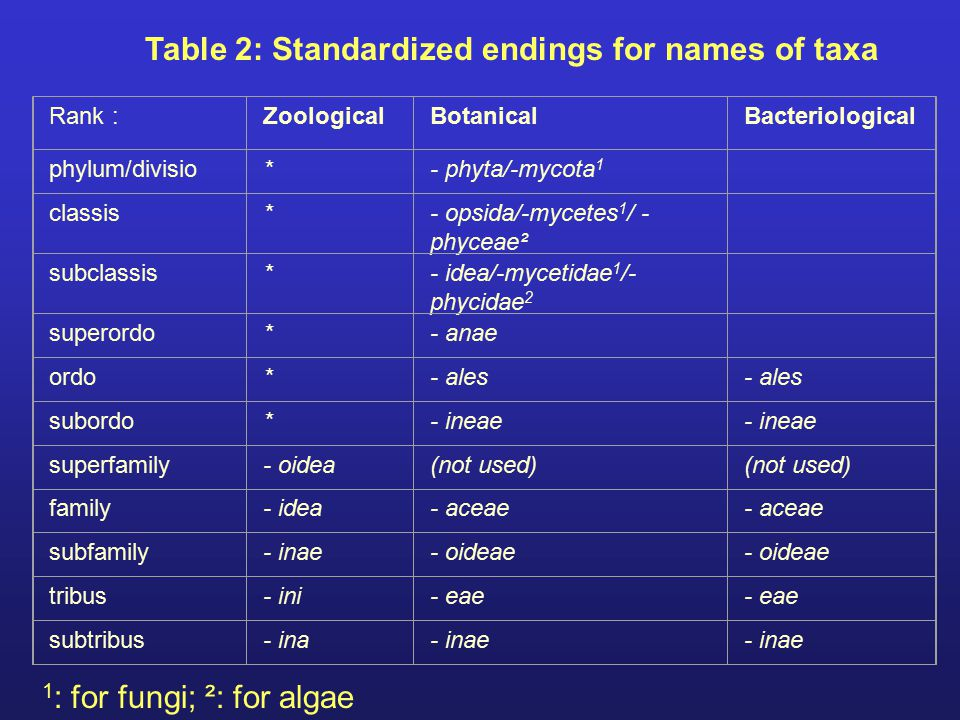 Table 2: Standardized endings for names of taxa Rank : ZoologicalBotanicalBacteriological phylum/divisio*- phyta/-mycota 1 classis*- opsida/-mycetes 1