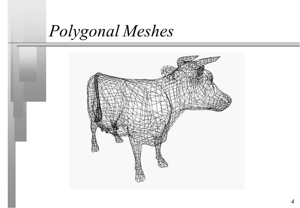 4 Polygonal Meshes