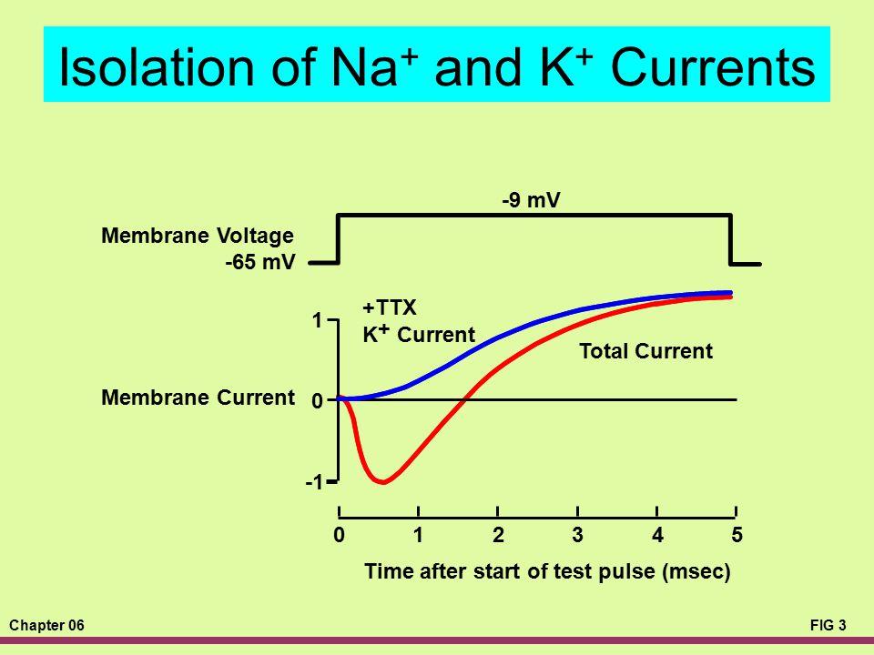 Chapter 06FIG 3 Isolation of Na + and K + Currents -9 mV -65 mV Time after start of test pulse (msec) 012345 1 0 +TTX K + Current Membrane Voltage Mem