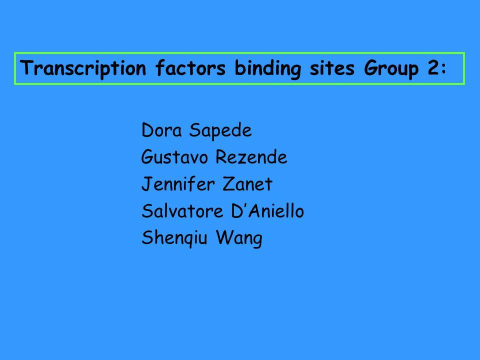 Transcription factors binding sites Group 2: Dora Sapede Gustavo Rezende Jennifer Zanet Salvatore D'Aniello Shenqiu Wang