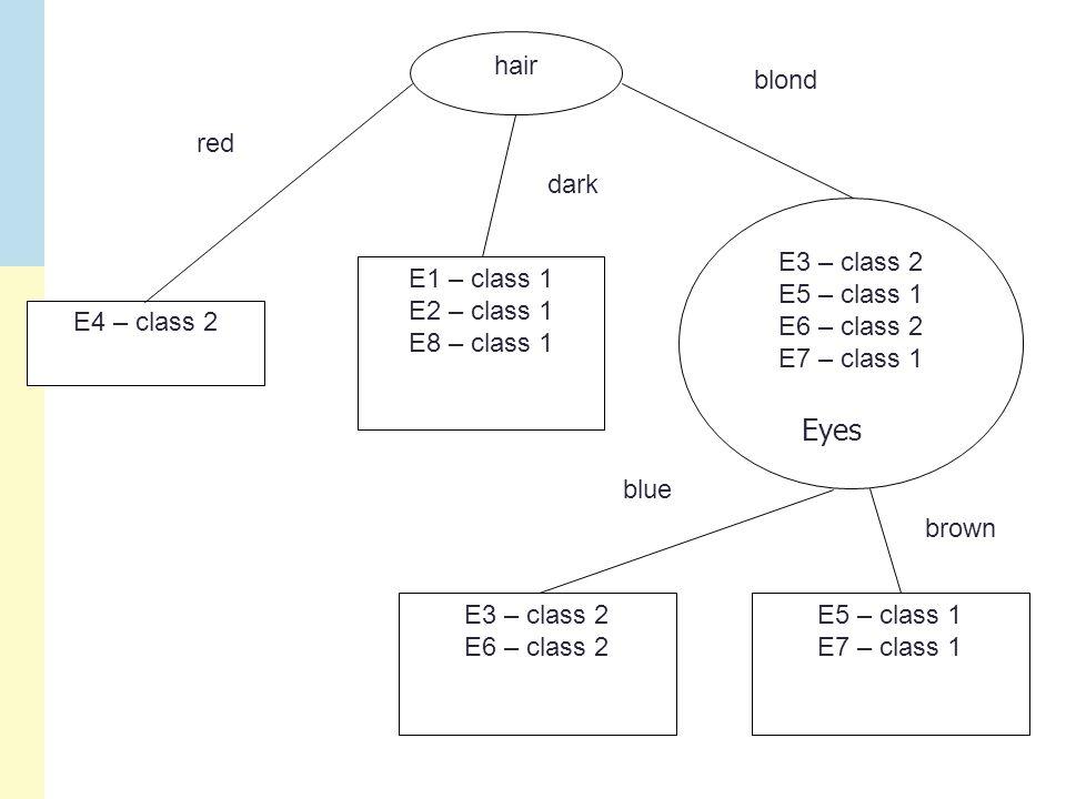 hair E4 – class 2 E1 – class 1 E2 – class 1 E8 – class 1 E3 – class 2 E5 – class 1 E6 – class 2 E7 – class 1 red dark blond E3 – class 2 E6 – class 2 E5 – class 1 E7 – class 1 blue brown Eyes