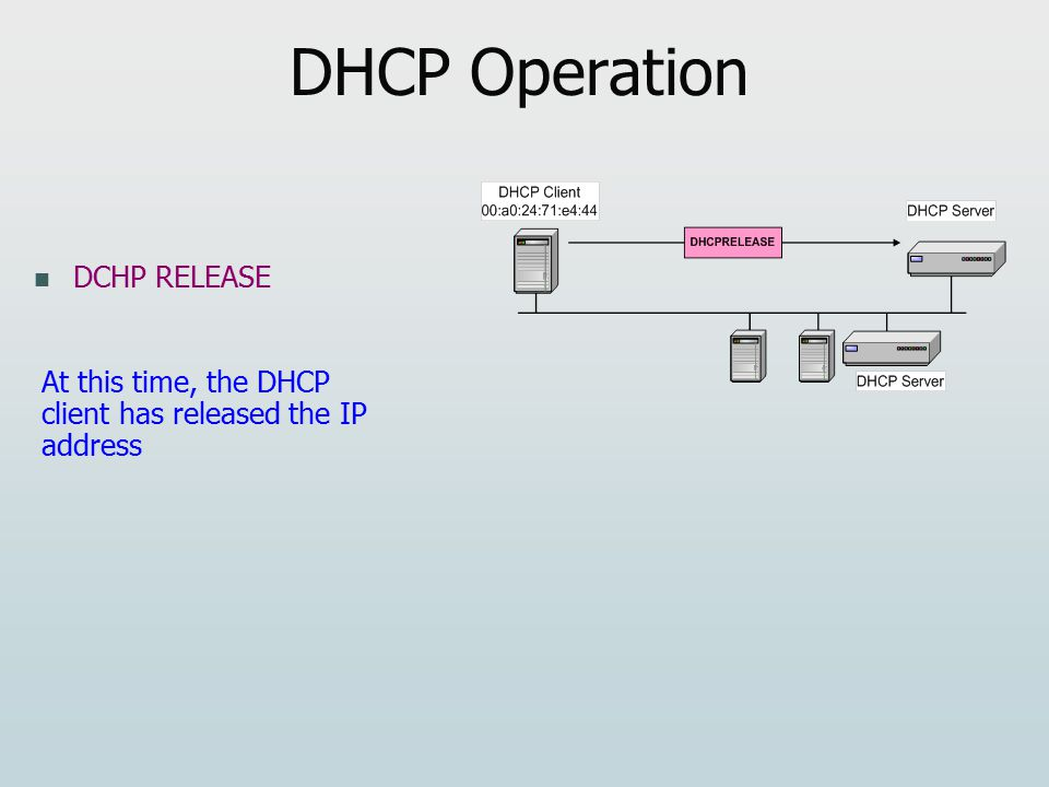 DHCP Operation DCHP RELEASE At this time, the DHCP client has released the IP address