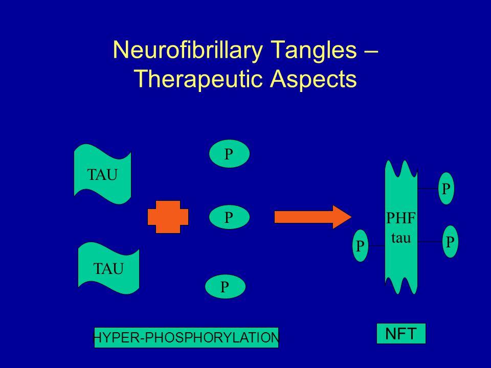 Neurofibrillary Tangles – Therapeutic Aspects TAU P P P PHF tau P P P HYPER-PHOSPHORYLATION NFT