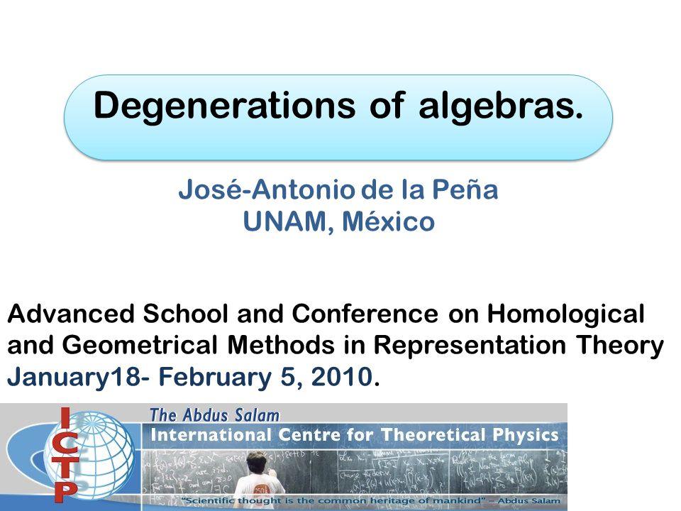Degenerations of algebras.