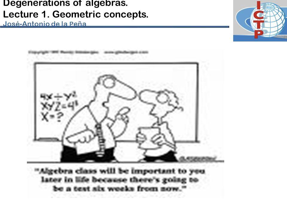Degenerations of algebras. Lecture 1. Geometric concepts. José-Antonio de la P eña