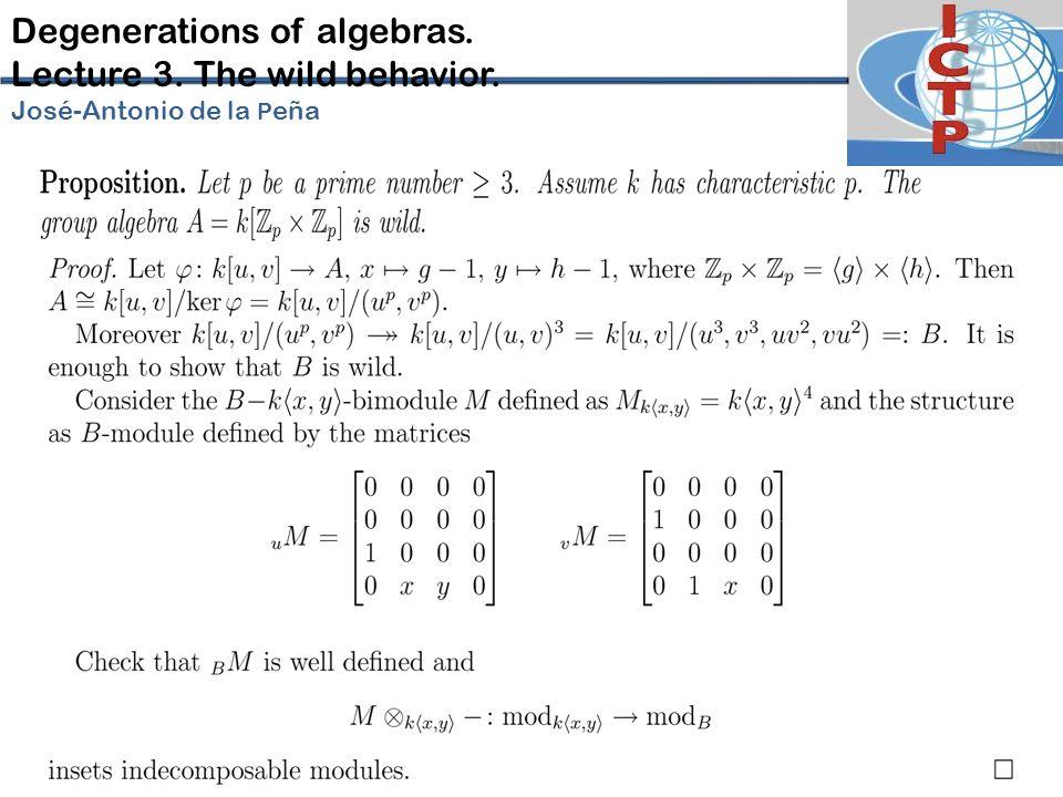 Degenerations of algebras. Lecture 3. The wild behavior. José-Antonio de la P eña