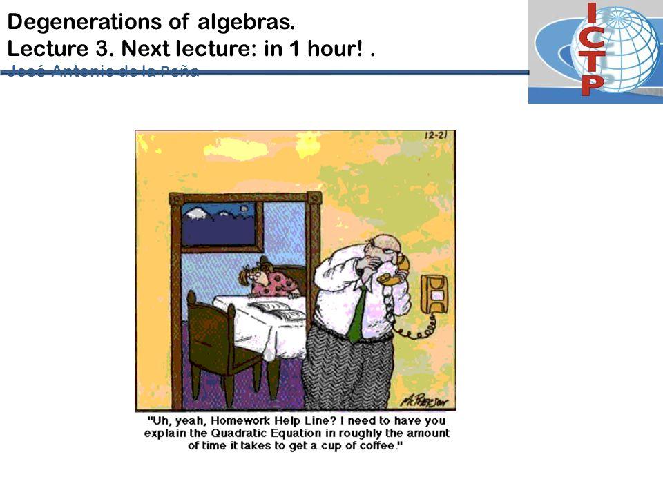 Degenerations of algebras. Lecture 3. Next lecture: in 1 hour!. José-Antonio de la P eña