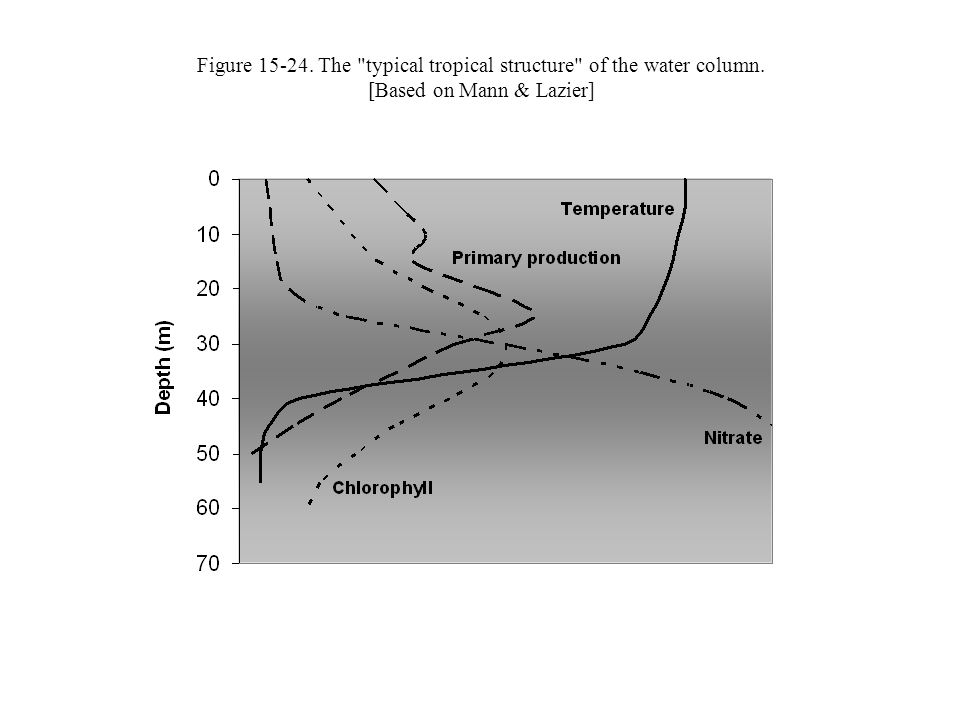Figure 15-24. The typical tropical structure of the water column. [Based on Mann & Lazier]