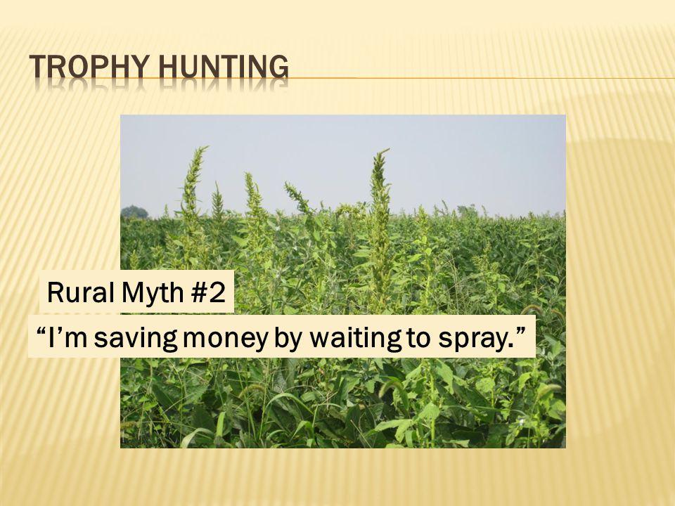 Rural Myth #2 I'm saving money by waiting to spray.