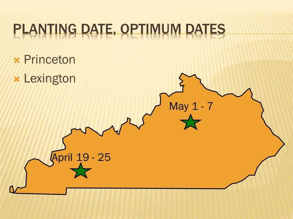  Princeton  Lexington May 1 - 7 April 19 - 25