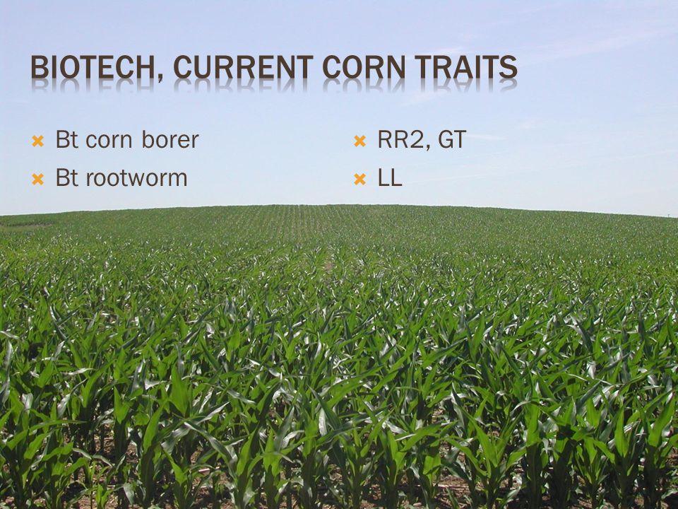  Bt corn borer  Bt rootworm  RR2, GT  LL