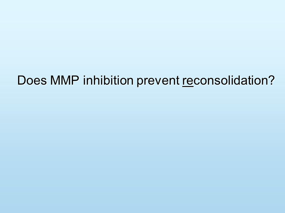 Does MMP inhibition prevent reconsolidation