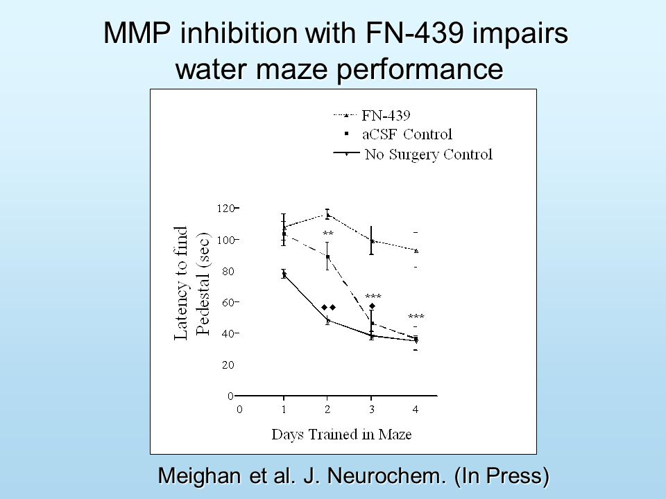 Does MMP inhibition prevent acquisition or consolidation of cocaine-induced CPP?
