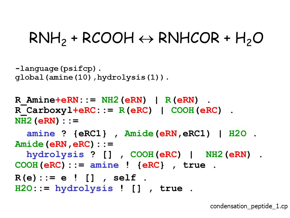 RNH 2 + RCOOH  RNHCOR + H 2 O -language(psifcp). global(amine(10),hydrolysis(1)).
