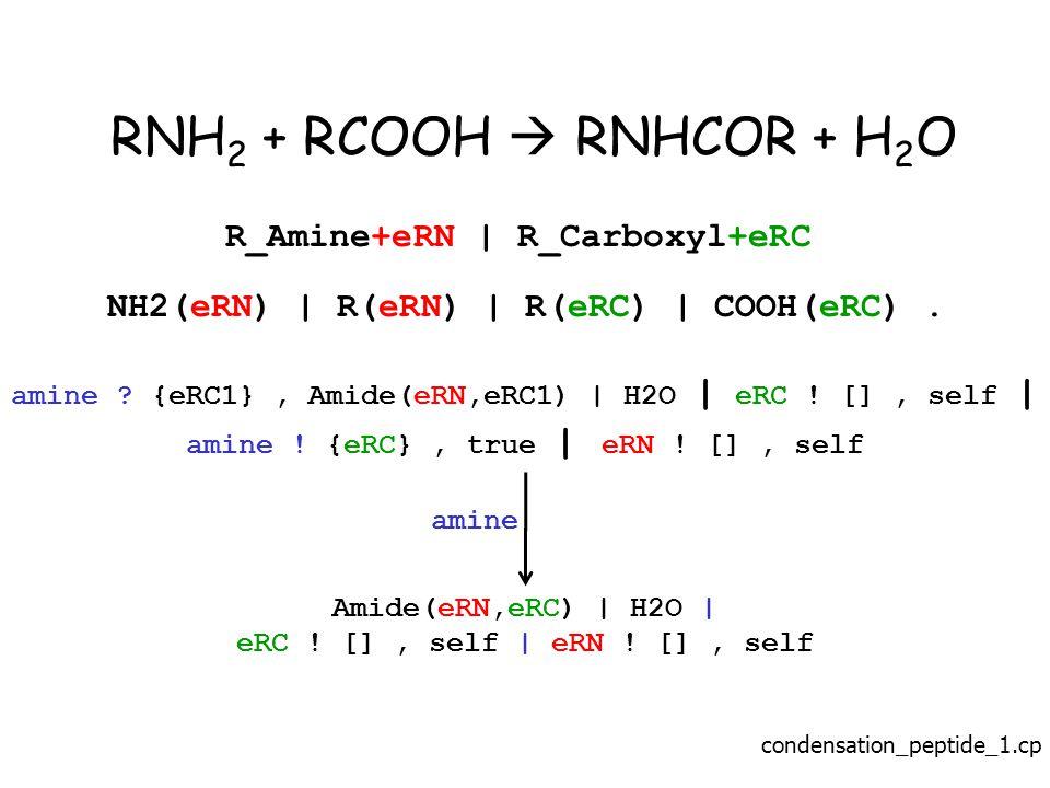 RNH 2 + RCOOH  RNHCOR + H 2 O R_Amine+eRN | R_Carboxyl+eRC NH2(eRN) | R(eRN) | R(eRC) | COOH(eRC).