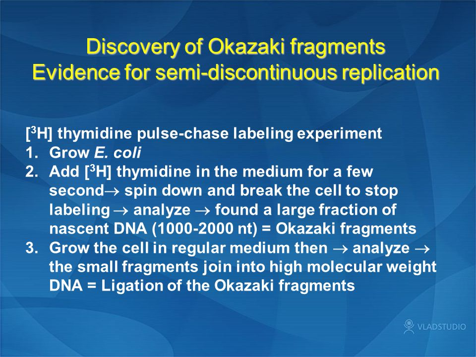 Discovery of Okazaki fragments Evidence for semi-discontinuous replication [ 3 H] thymidine pulse-chase labeling experiment 1.Grow E. coli 2.Add [ 3 H