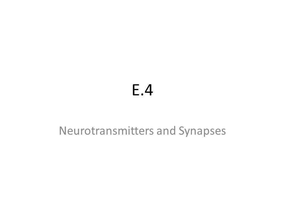 E.4 Neurotransmitters and Synapses