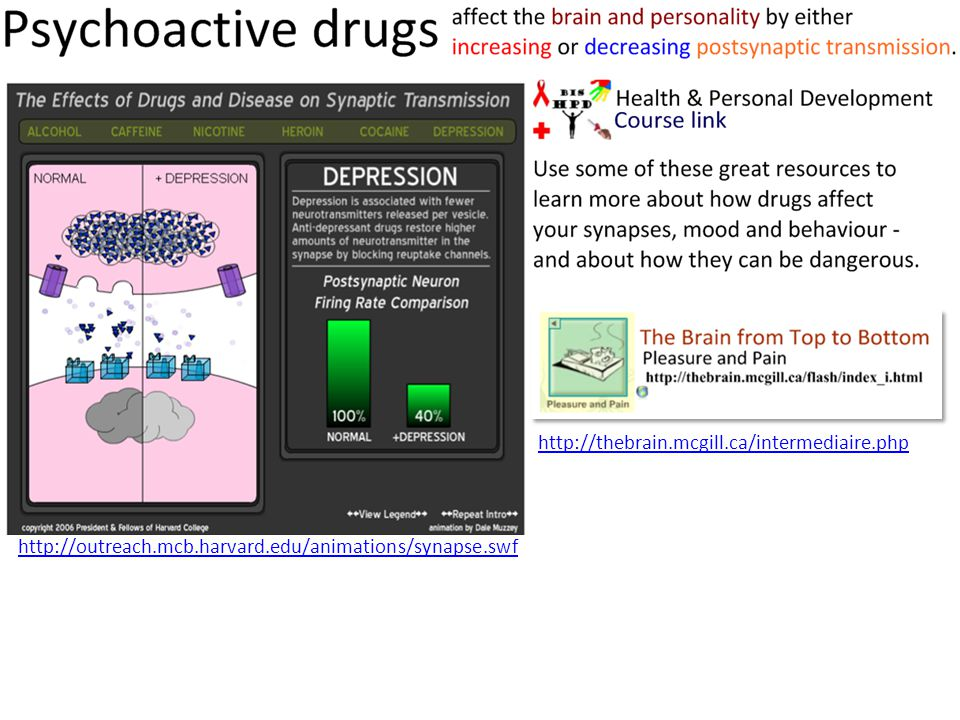 http://outreach.mcb.harvard.edu/animations/synapse.swf http://thebrain.mcgill.ca/intermediaire.php