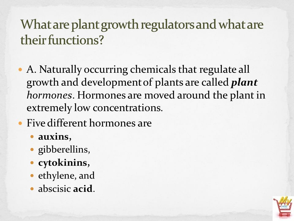 A. Naturally occurring chemicals that regulate all growth and development of plants are called plant hormones. Hormones are moved around the plant in