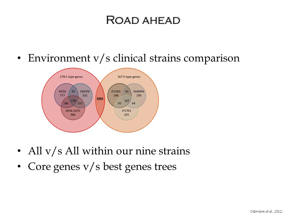Road ahead Environment v/s clinical strains comparison All v/s All within our nine strains Core genes v/s best genes trees (Morrison et al., 2012)