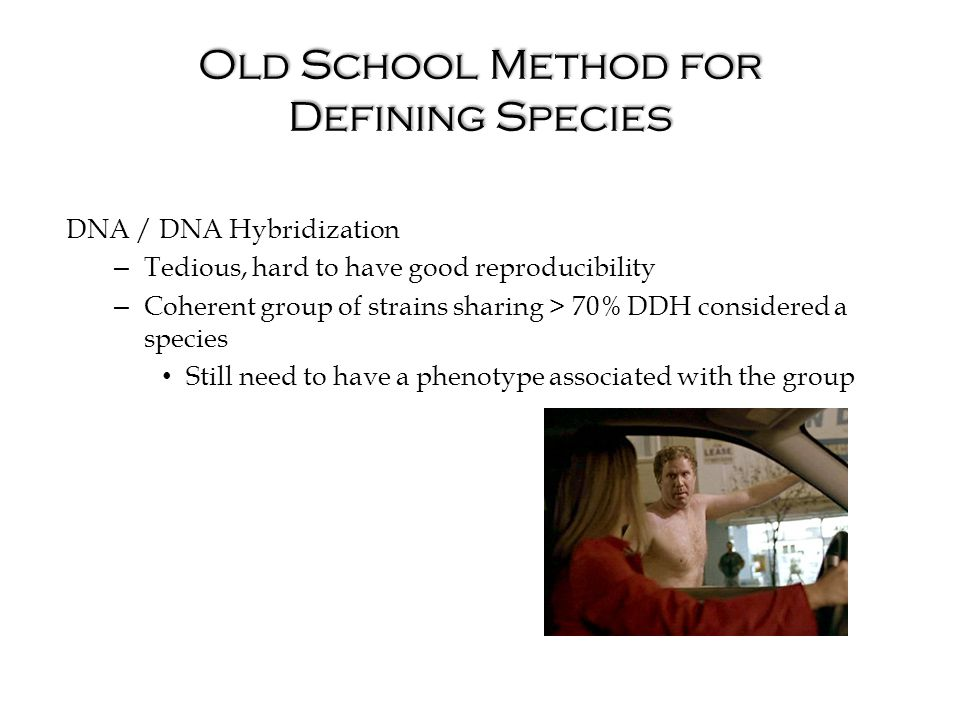 Old School Method for Defining Species DNA / DNA Hybridization – Tedious, hard to have good reproducibility – Coherent group of strains sharing > 70% DDH considered a species Still need to have a phenotype associated with the group