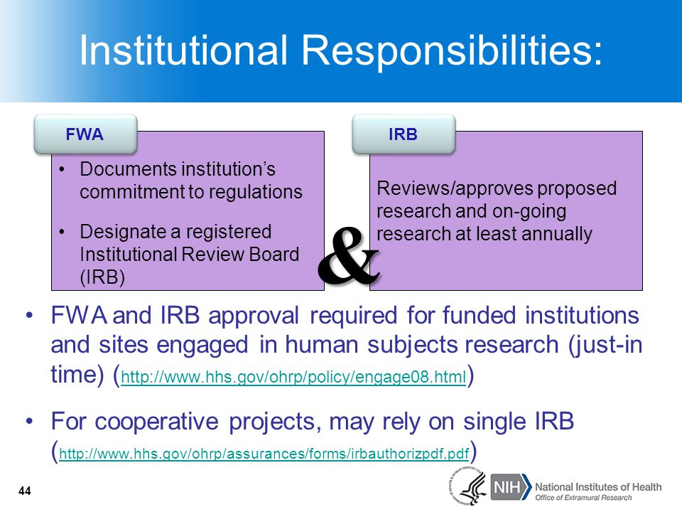 44 Institutional Responsibilities: Documents institution's commitment to regulations Designate a registered Institutional Review Board (IRB) FWA Revie