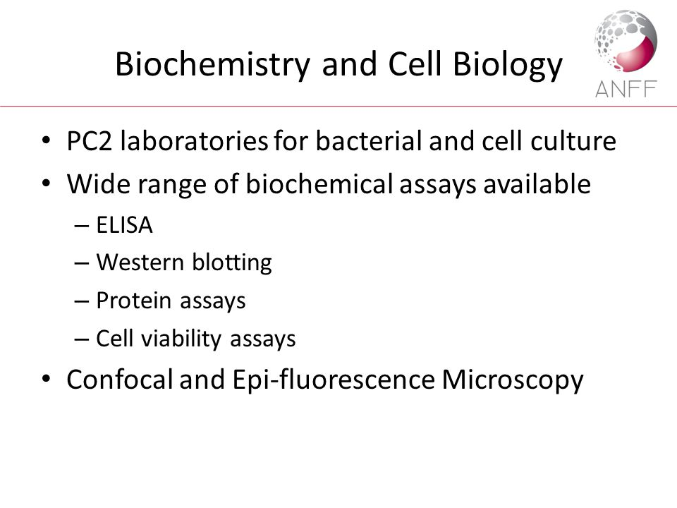 Biochemistry and Cell Biology PC2 laboratories for bacterial and cell culture Wide range of biochemical assays available – ELISA – Western blotting –