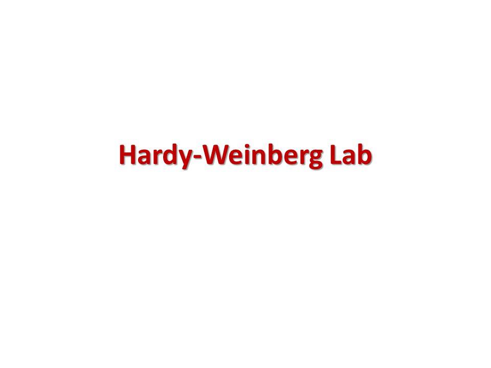 Hardy-Weinberg Lab