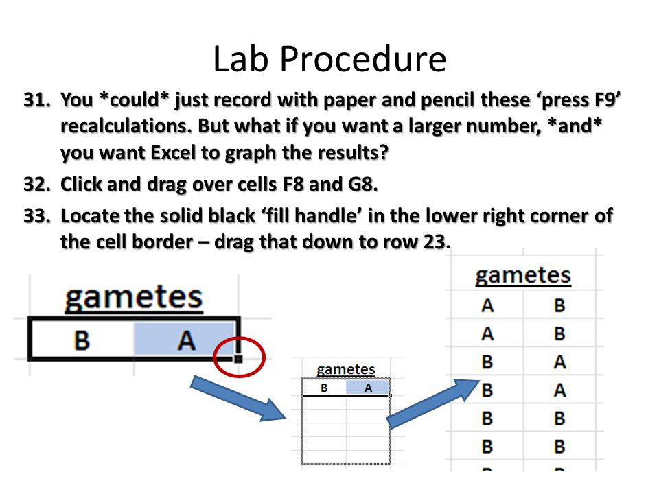 Lab Procedure 31.You *could* just record with paper and pencil these 'press F9' recalculations.