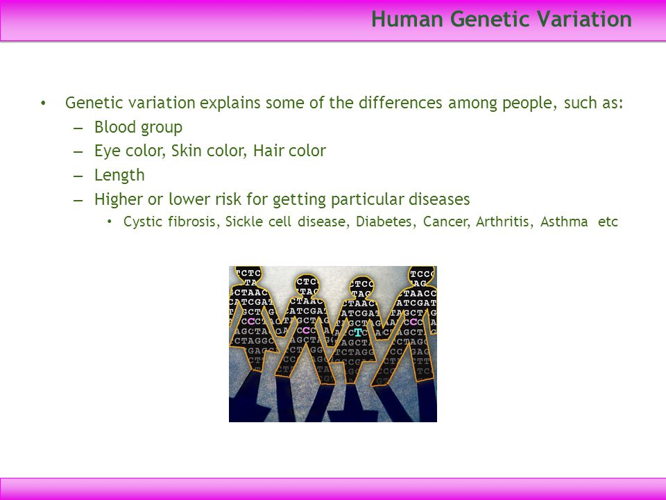 Human Genetic Variation Genetic variation explains some of the differences among people, such as: – Blood group – Eye color, Skin color, Hair color –
