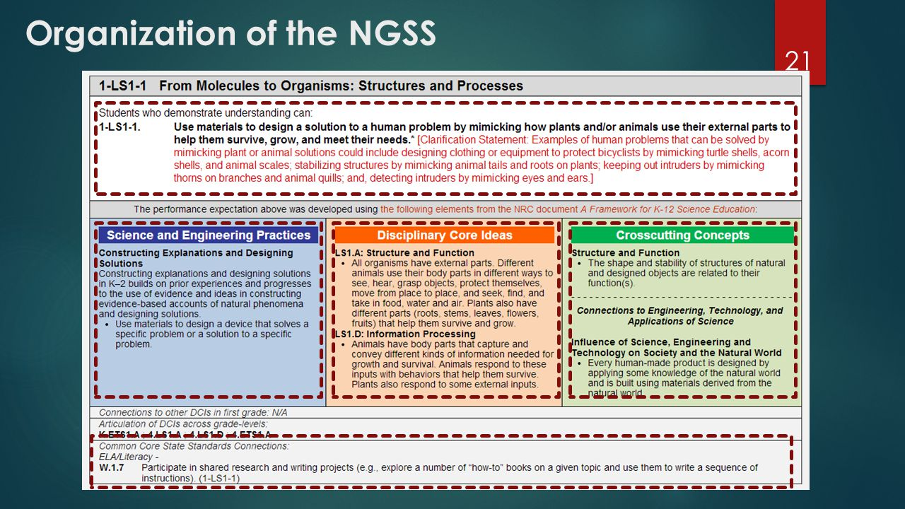 Organization of the NGSS 21