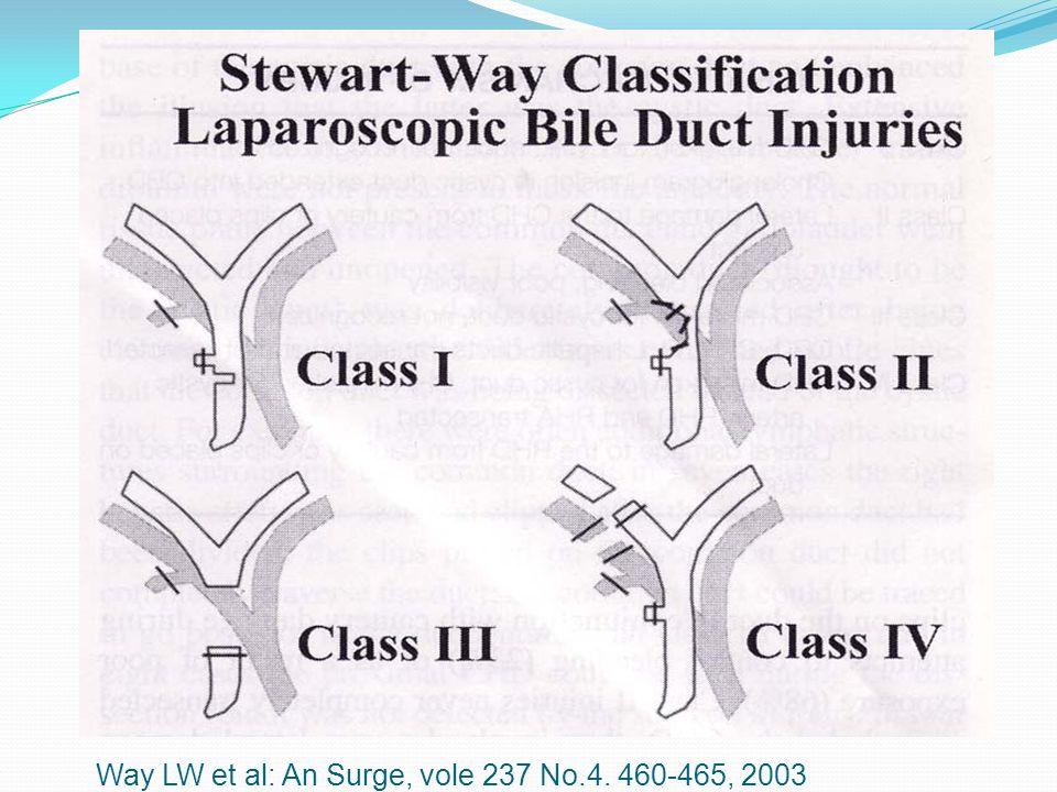 Way LW et al: An Surge, vole 237 No.4. 460-465, 2003