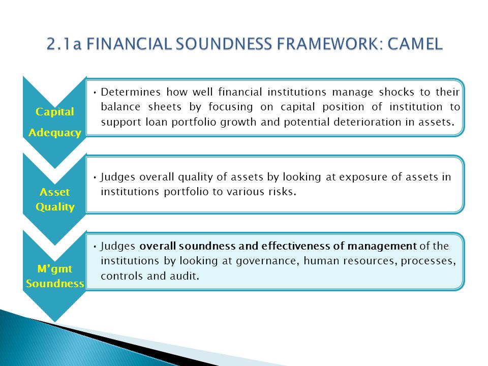Capital Adequacy Determines how well financial institutions manage shocks to their balance sheets by focusing on capital position of institution to support loan portfolio growth and potential deterioration in assets.