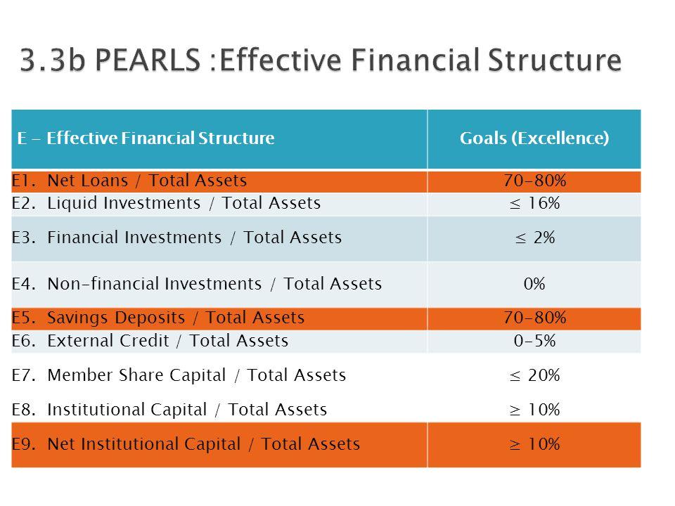 E - Effective Financial StructureGoals (Excellence) E1.