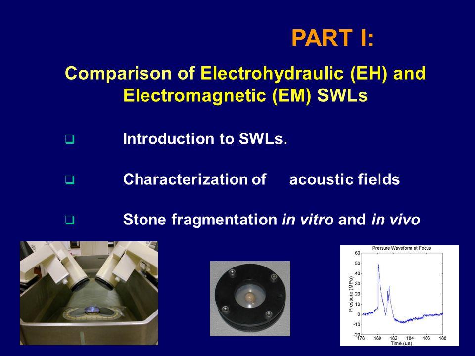 Stone Fragmentation in vivo