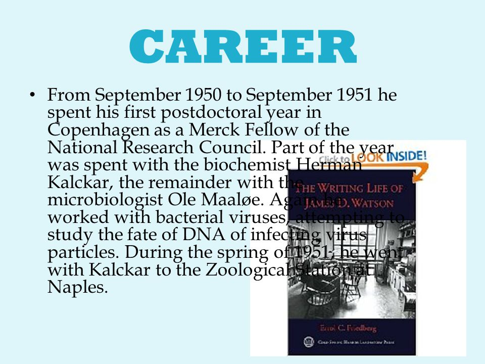 CAREER From September 1950 to September 1951 he spent his first postdoctoral year in Copenhagen as a Merck Fellow of the National Research Council. Pa
