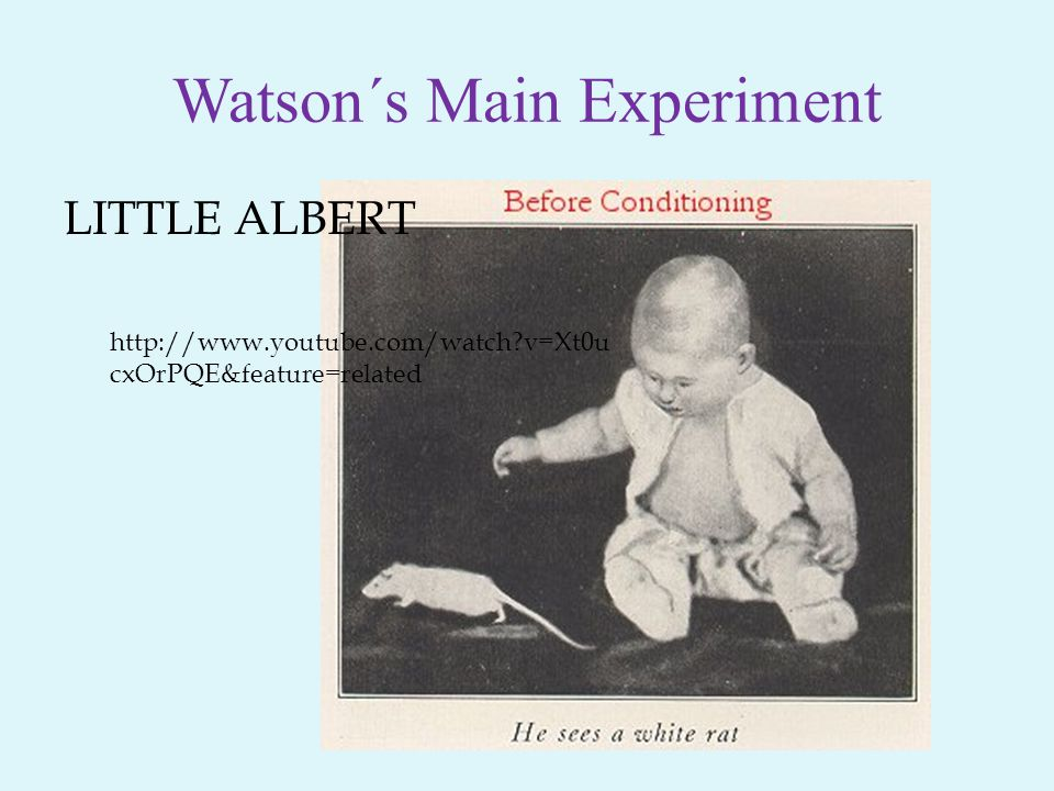 Watson´s Main Experiment LITTLE ALBERT http://www.youtube.com/watch?v=Xt0u cxOrPQE&feature=related