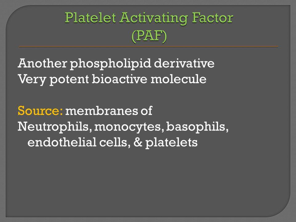 Another phospholipid derivative Very potent bioactive molecule Source: membranes of Neutrophils, monocytes, basophils, endothelial cells, & platelets